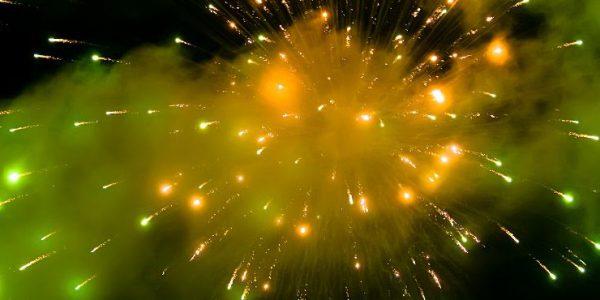 MILON Wenst U Fijne Feestdagen En Een Voorspoedig 2013!